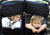 Double stroller with twins inside.