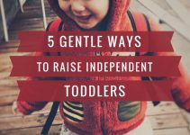 Raising an Independent Toddler