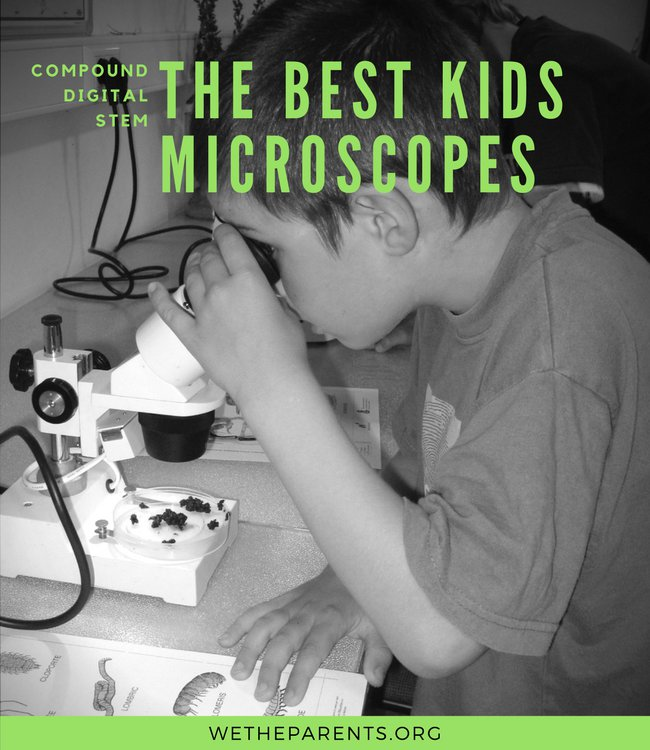 cb0916a7b 7 Best Microscopes for Kids (2019 Guide & Reviews)   WeTheParents