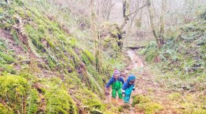 Photo of two little boys in a forest